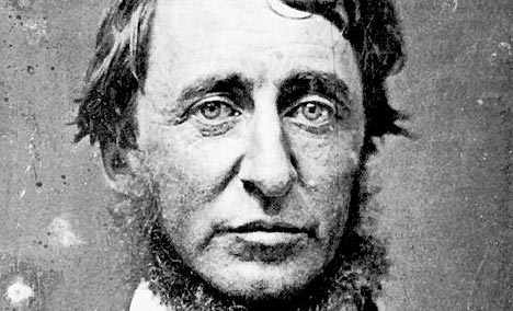 henry david thoreau final Extensive site devoted to the writings, philosophy, life of henry david thoreau created by the writings of henry d thoreau, definitive edition of thoreau's works, directed by elizabeth.