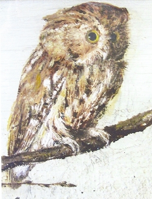owl by may alcott0001