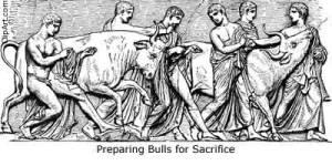 SacrificeBull-l