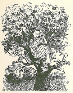 512 louisa writing in the appletree