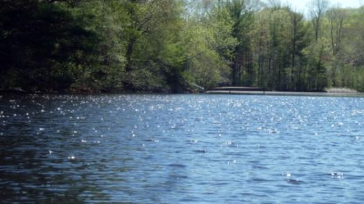 1-lake2