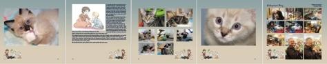 640 critter room memory book banner2