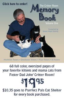 critter room memory book box art2