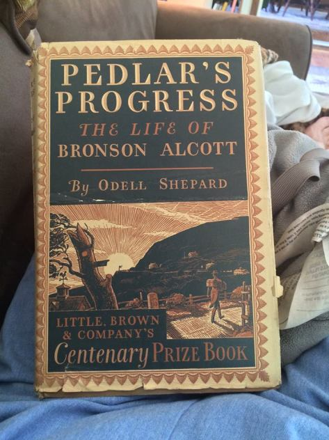 pedlar's progress