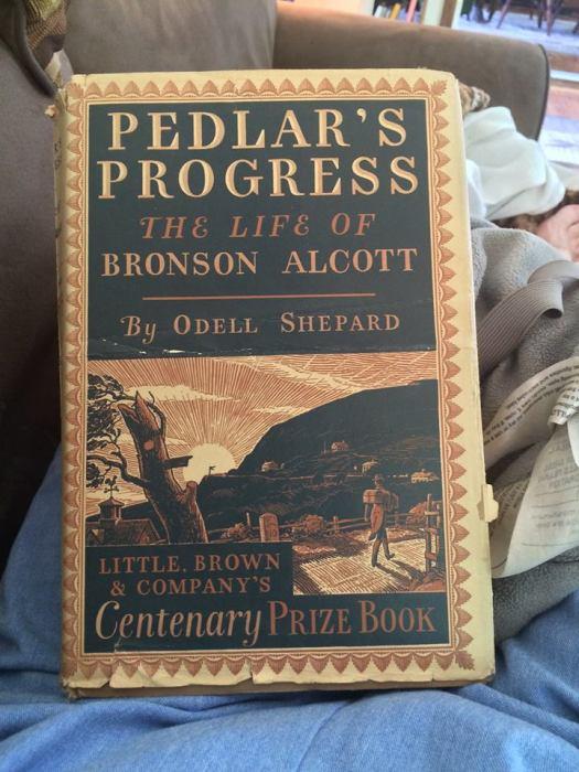 pedlar's progress